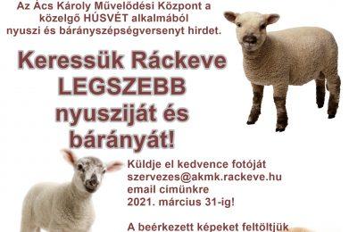 Húsvéti nyuszi és bárányszépségverseny